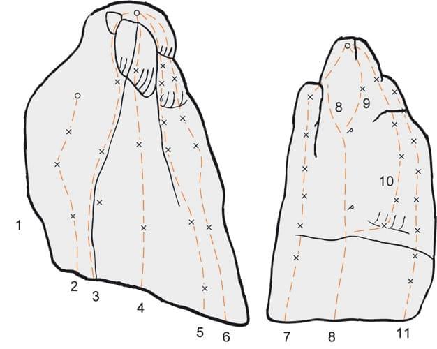 Klettern im Konstein Topo zum Kletterfels Bergspinnenturm